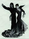 Flamenco_image002